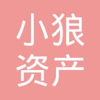 深圳市小狼资产管理有限公司